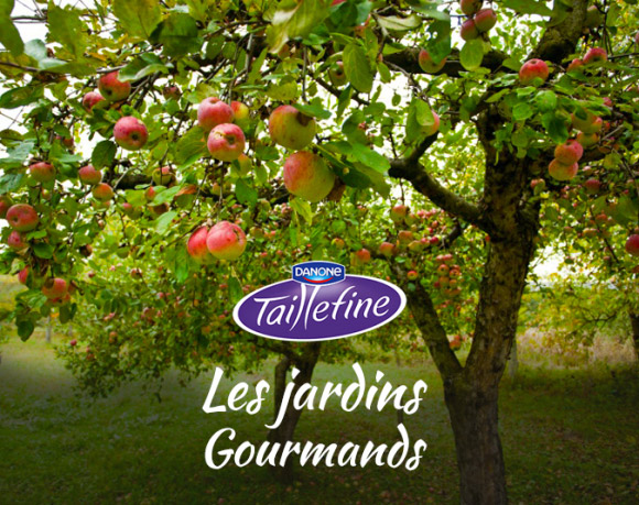 Naming Les Jardins Gourmands