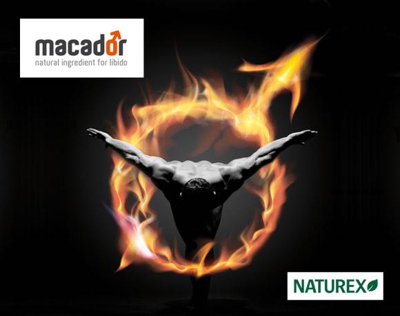 Création de marque pour Naturex