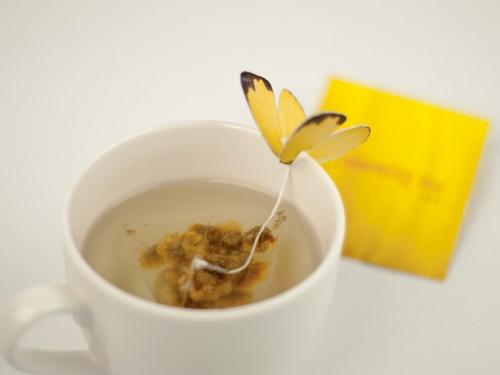 Packaging thé (7)