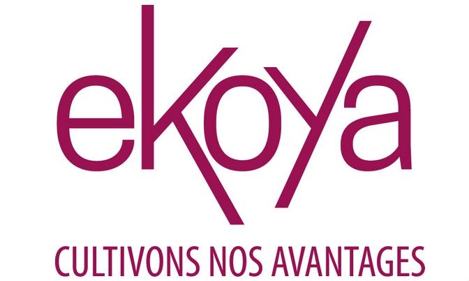 Ekoya, le nouveau nom du Club Camif