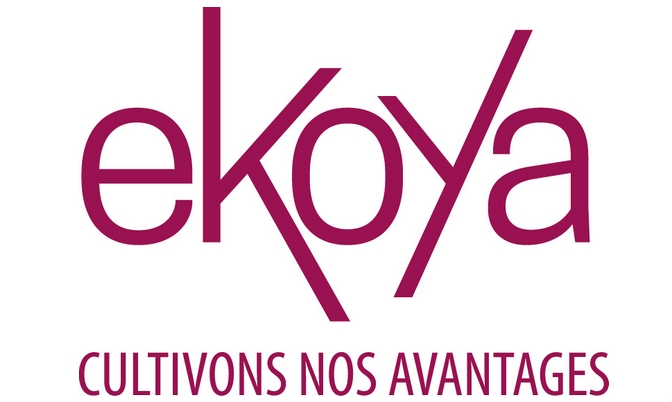 ekoya le nouveau nom du club camif agence de naming n kia. Black Bedroom Furniture Sets. Home Design Ideas