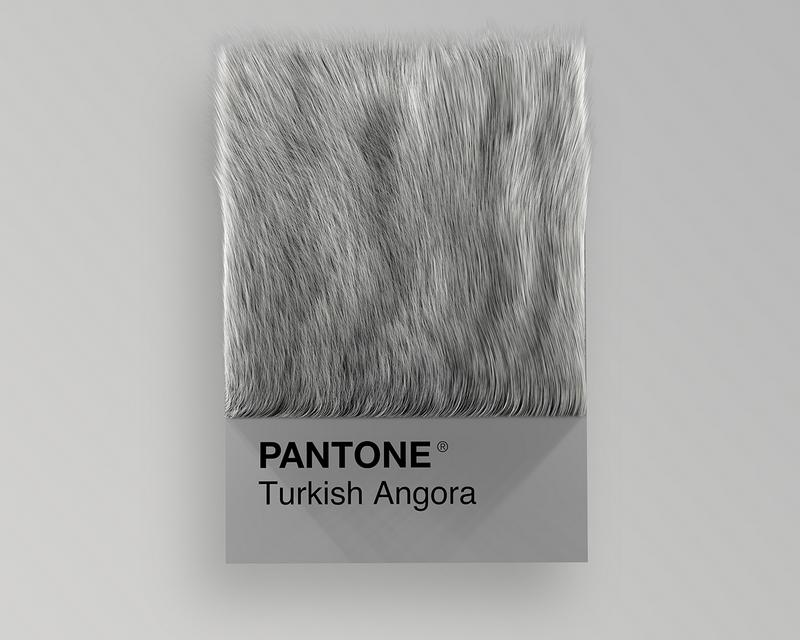 Nuancier Pantone (11)