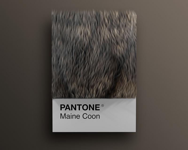 Nuancier Pantone (7)