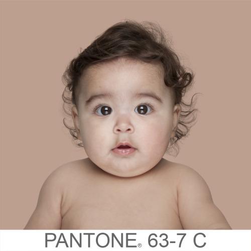 Pantone (2)