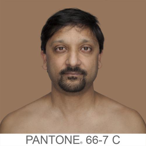 Pantone (6)