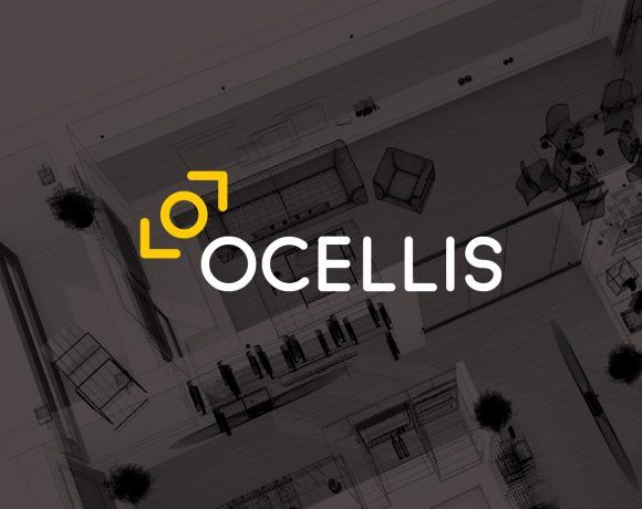 Naming Changement de Nom – Ocellis – Agence de Naming Énékia